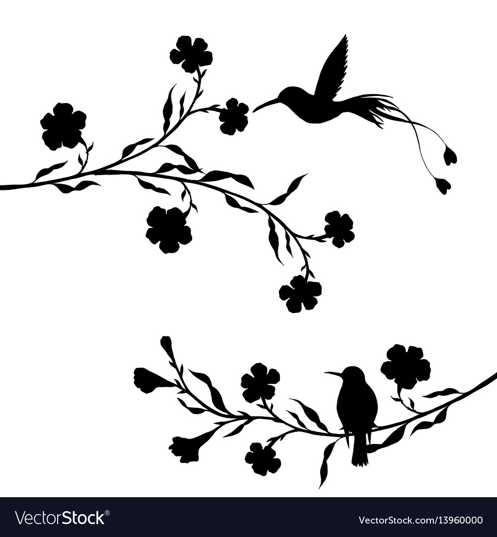Hummingbirds and flowers silhouettes