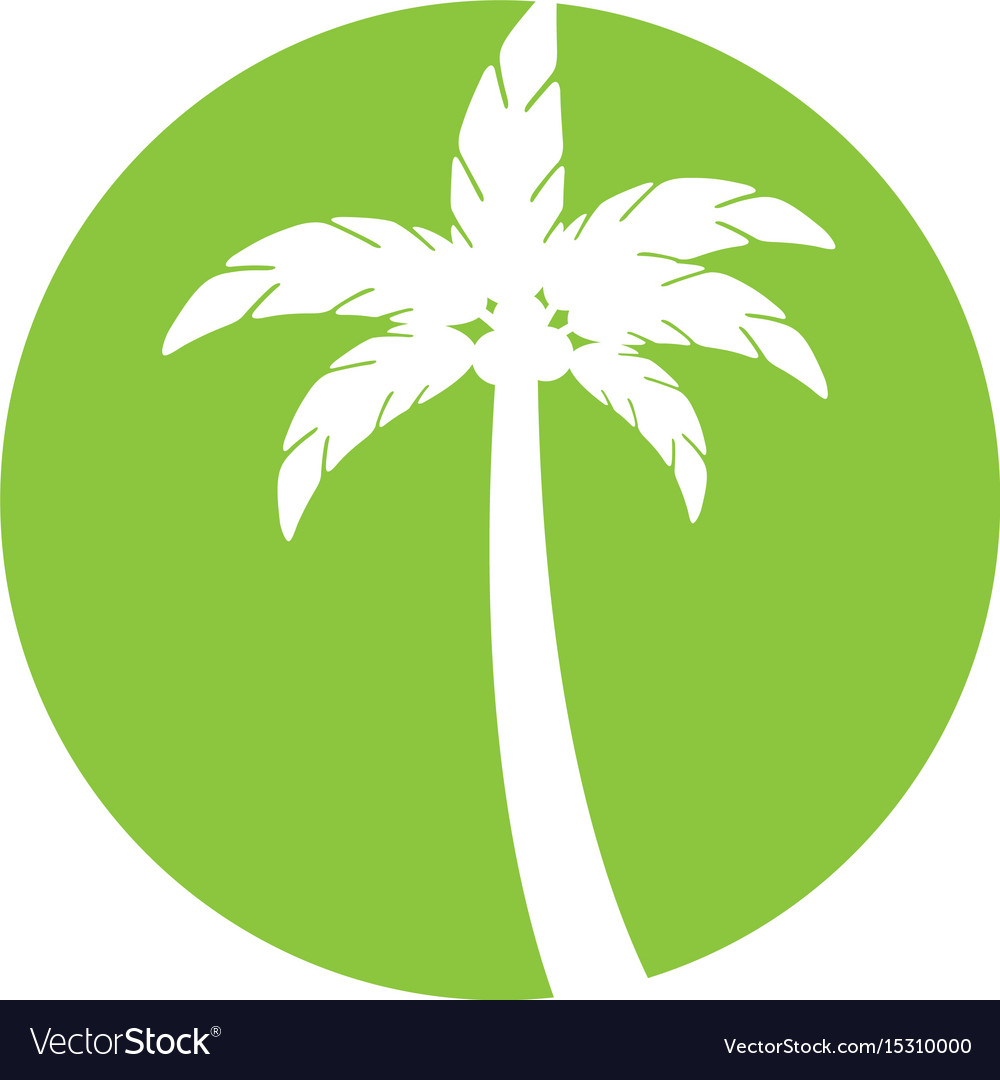 Tree palm summer icon
