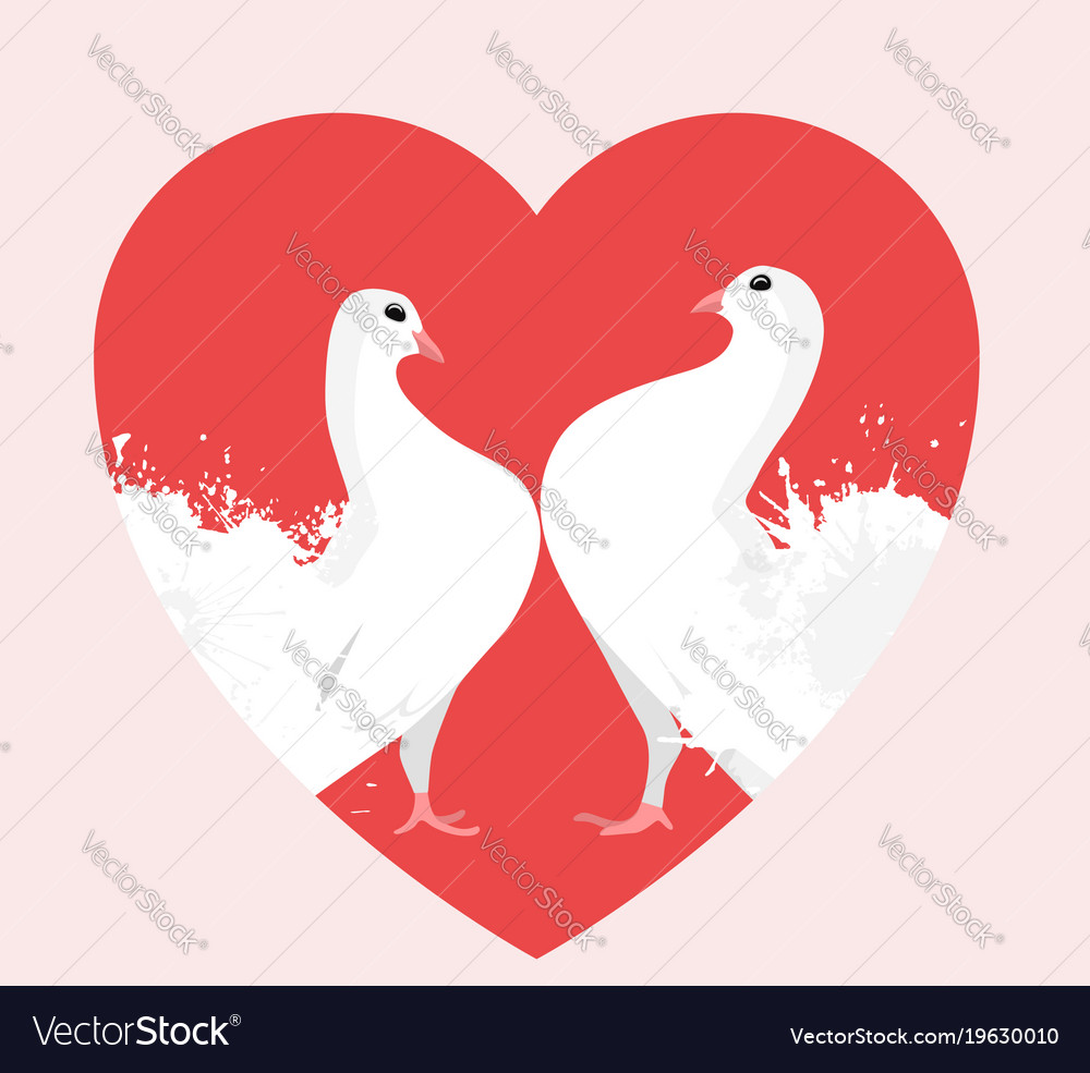 Two, Doves & Heart Vector Images (over 150)