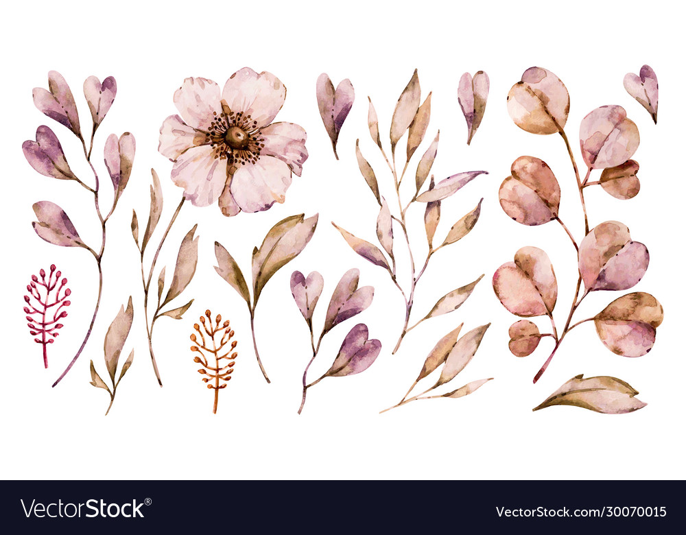 Flowers anemone and leaves handpainted set