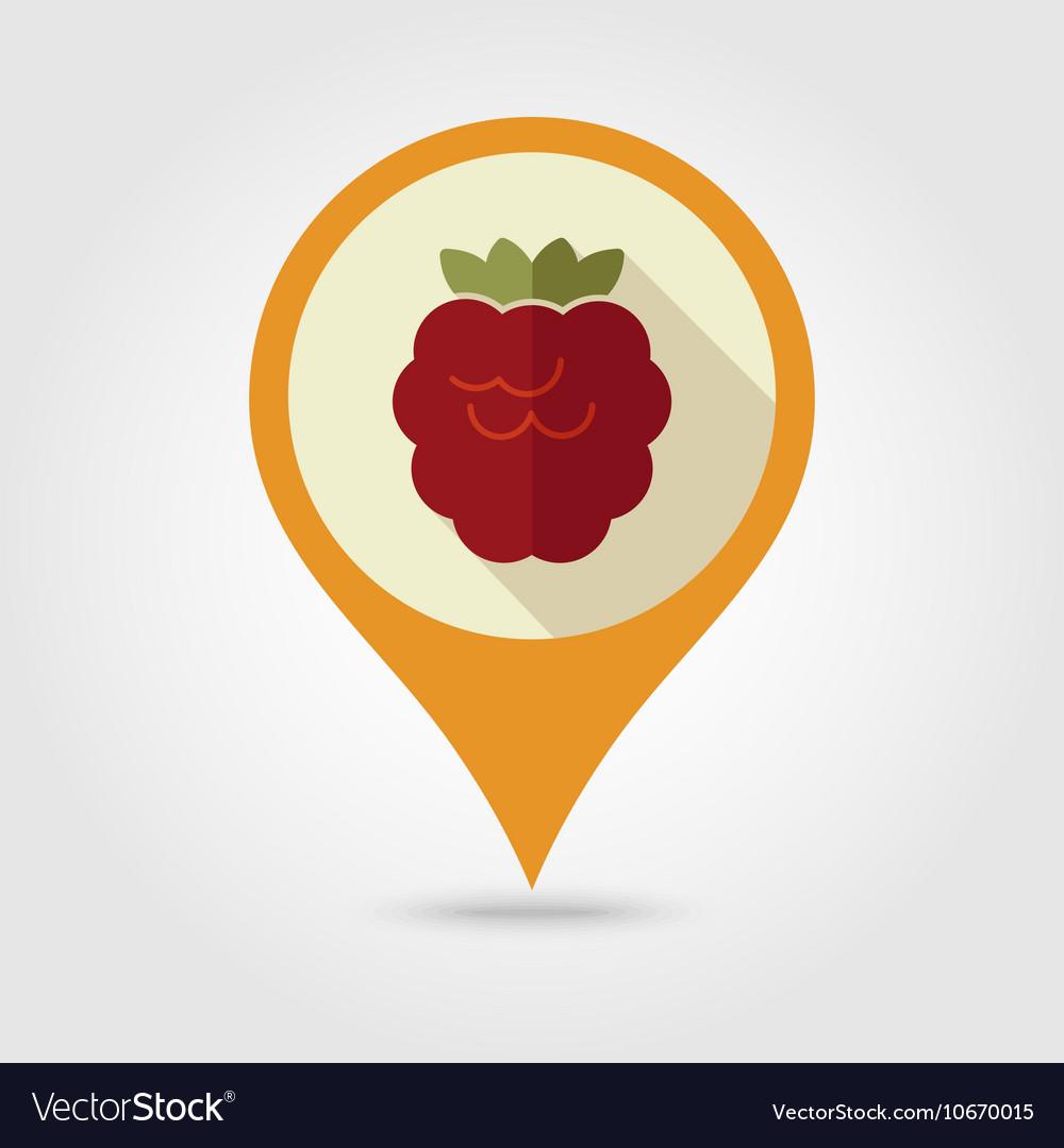 Raspberry flat pin map icon Berry fruit