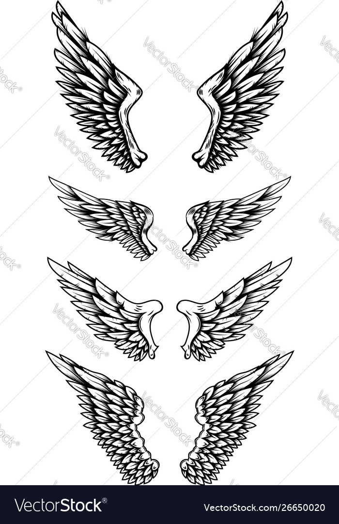 set eagle wings in tattoo style design royalty free vector vectorstock