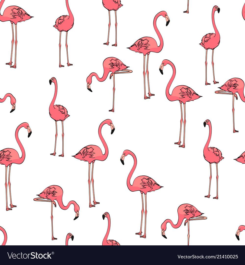 Seamless background three pink flamingos on white