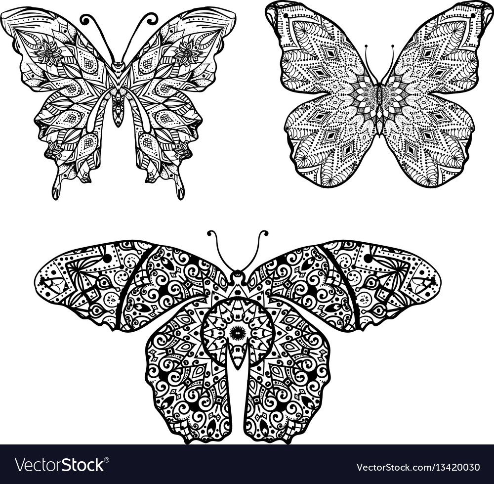 Butterfly in an mandalas ornament on background vector image