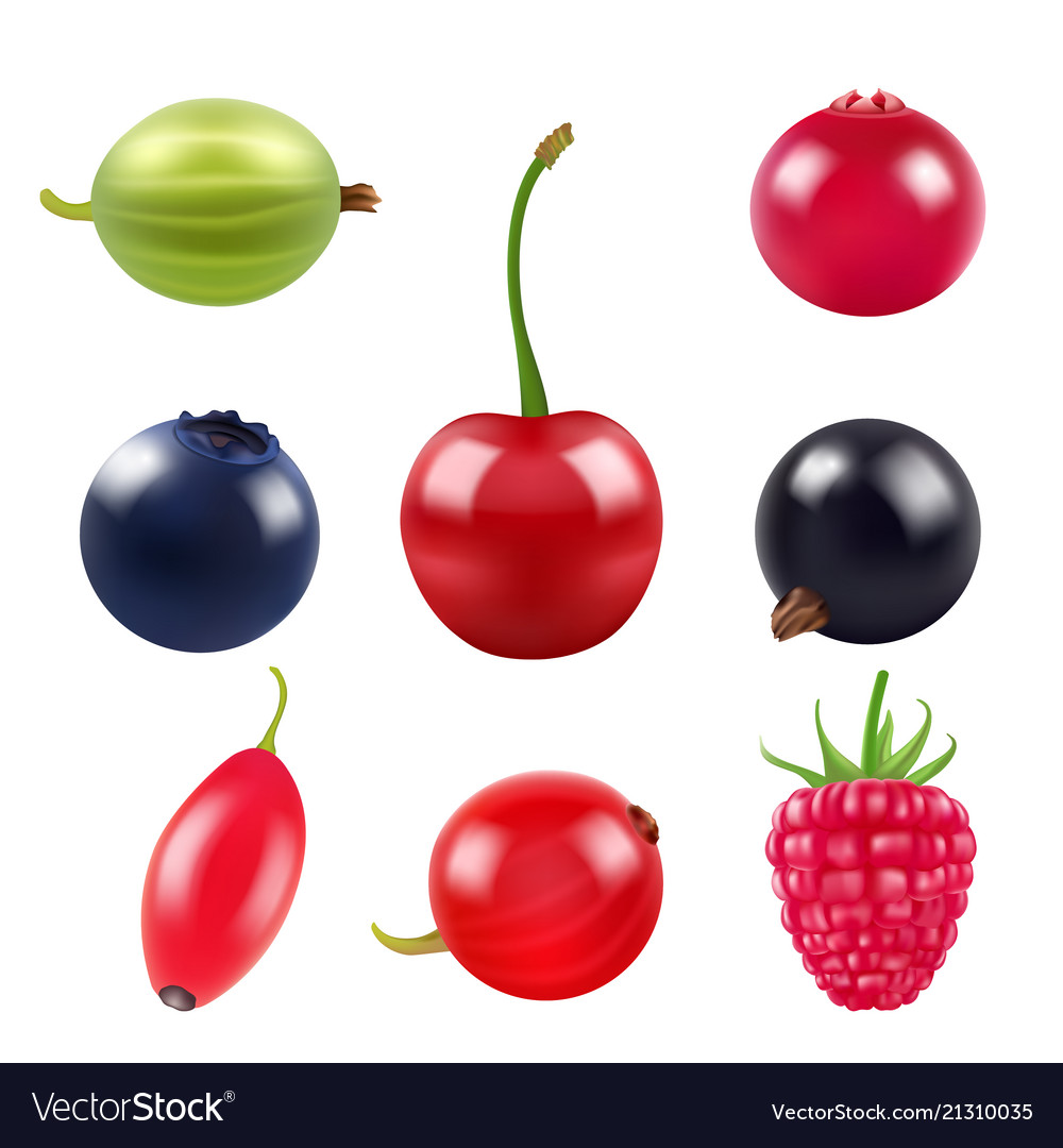 Realistic pictures of berries various fresh