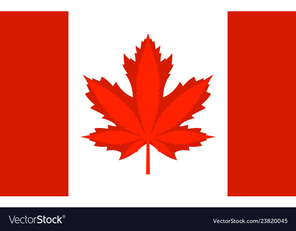 Legalization cannabis hemp on canada flag