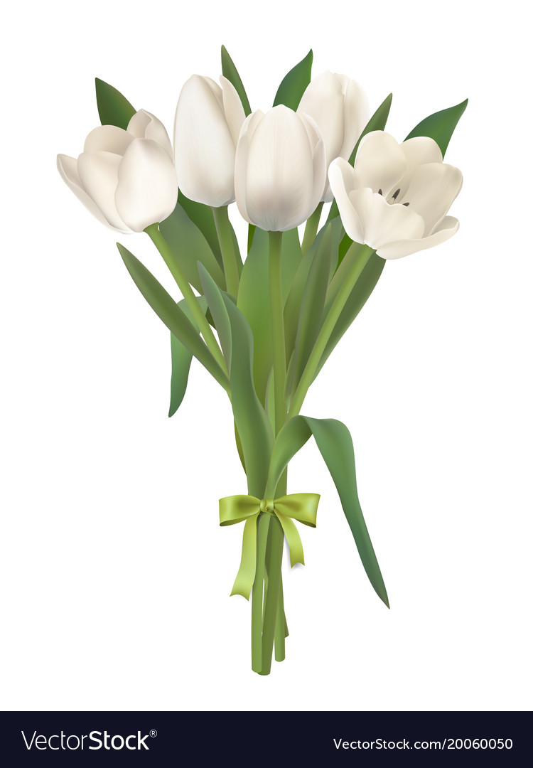 White Tulips Bouquet Royalty Free