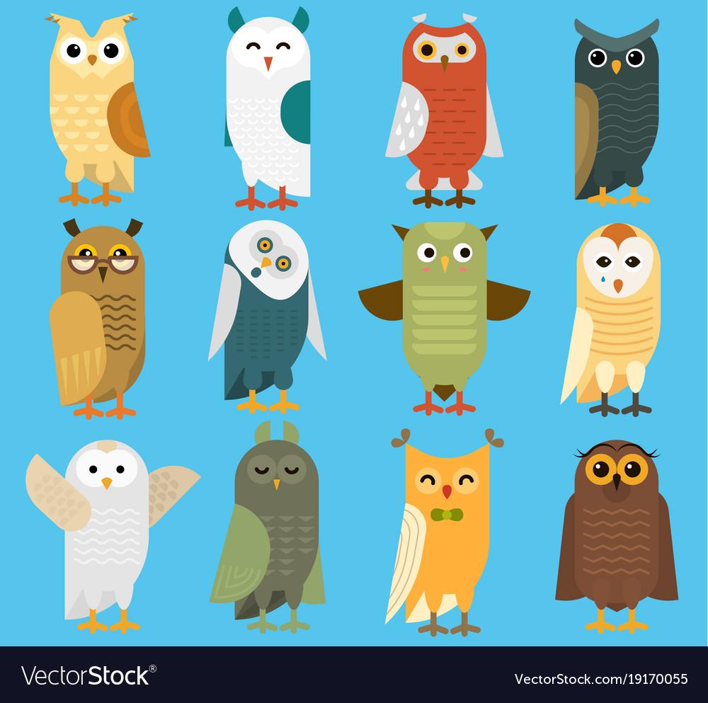 Owls cartoon cute bird set owlet character
