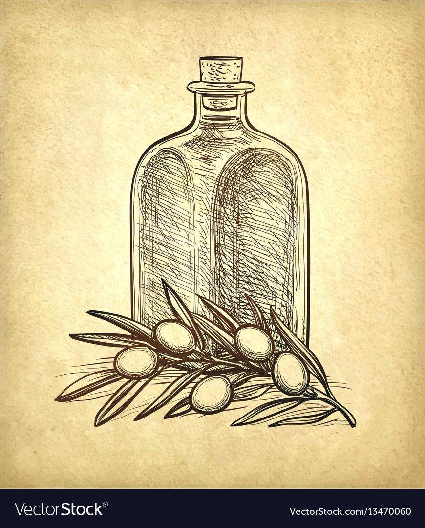 Bottle of olive oil and olive branch