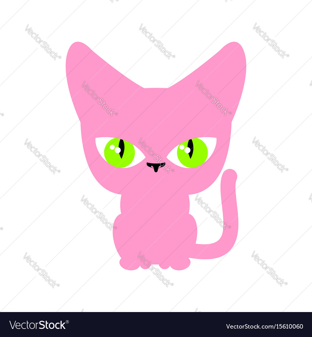 Cat pink isolated pet on white background