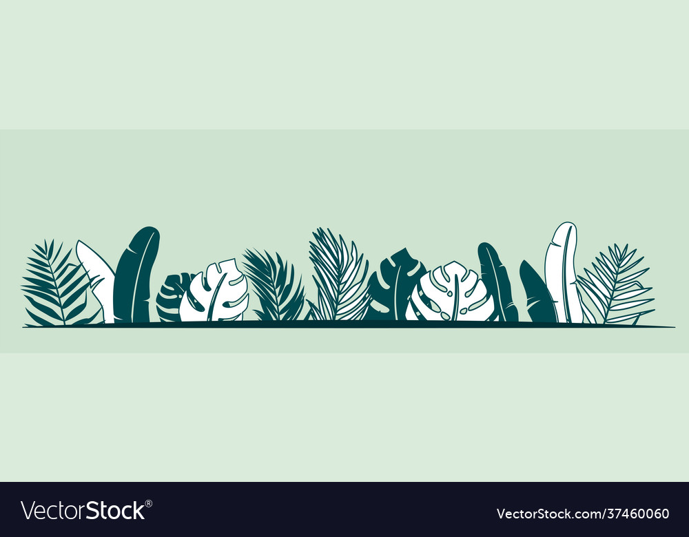 Jungle plant border