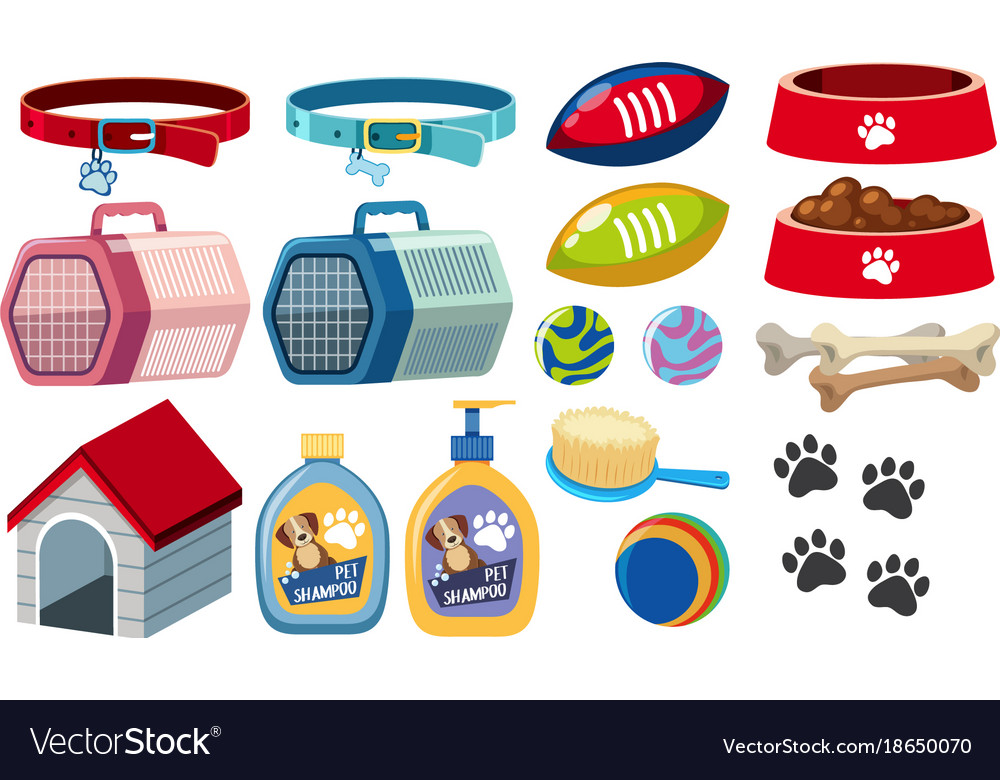 Different dog accessories on white background
