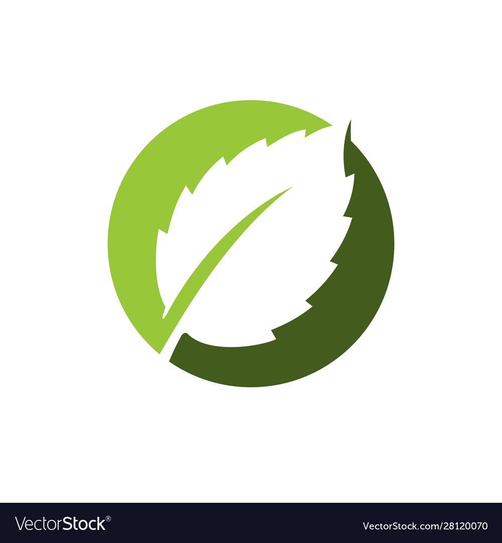 Simple and modern green leaf logo elements