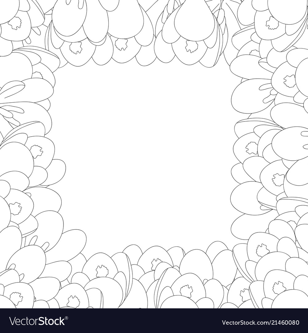 Crocus flower outline border