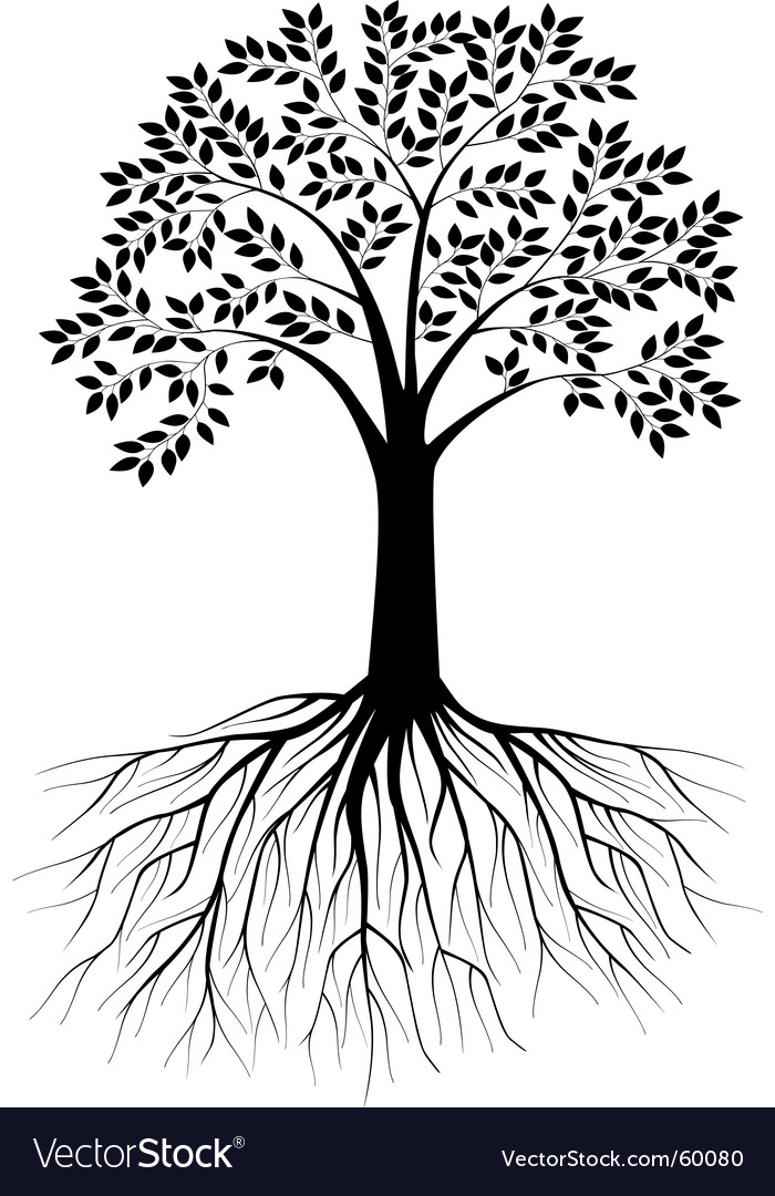 tree silhouette vector. Tree Silhouette Vector