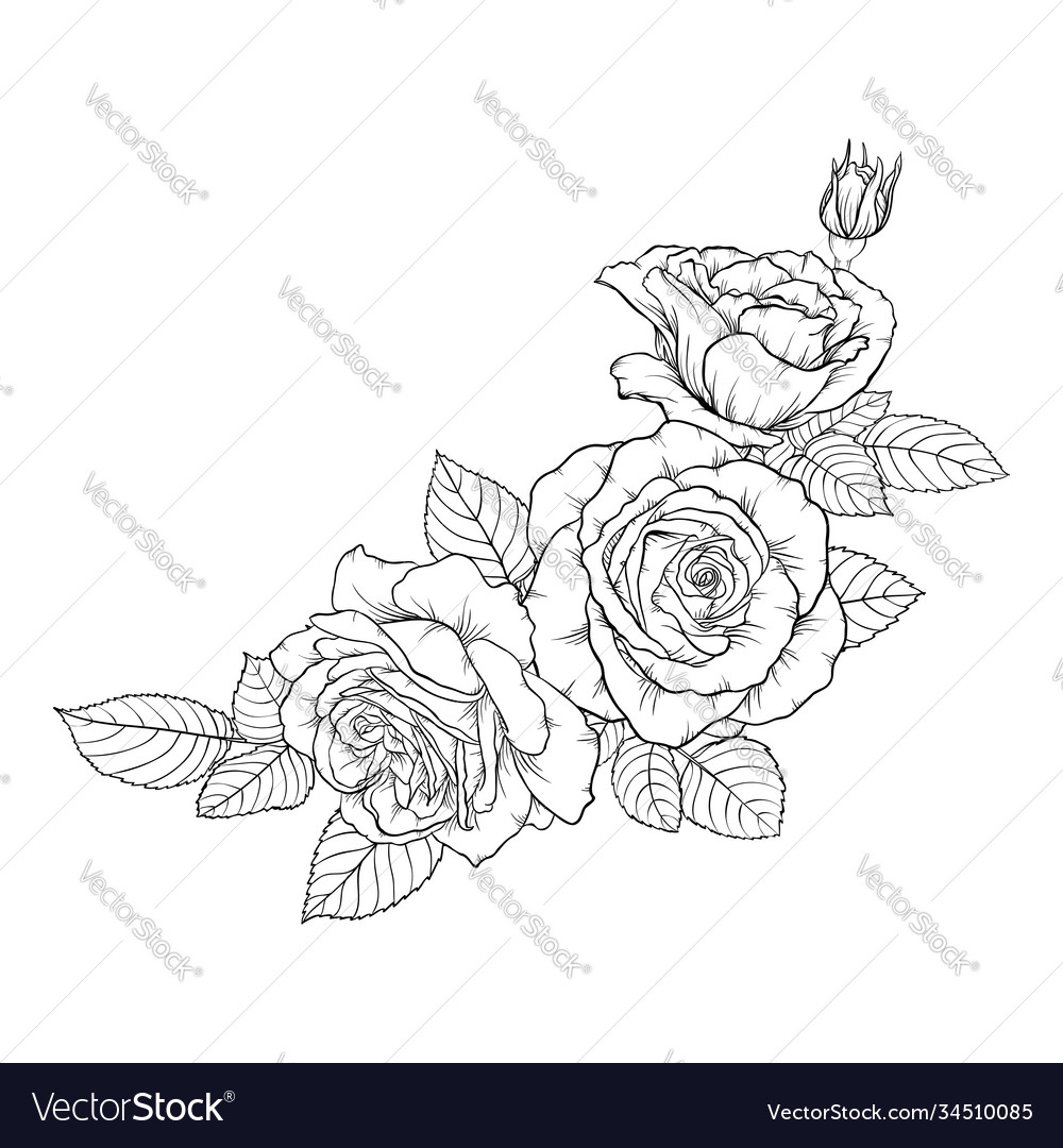 Beautiful black and white bouquet rose and leaves