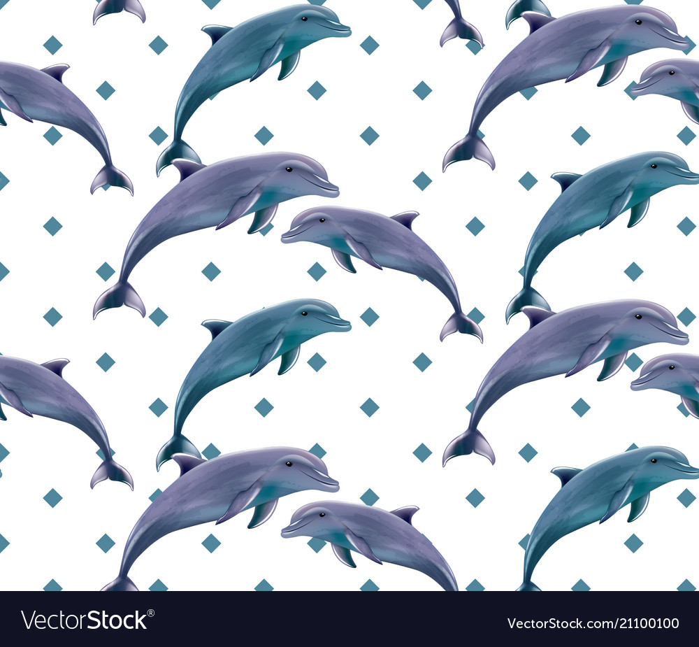 Dolphins pattern spring summer backgrounds