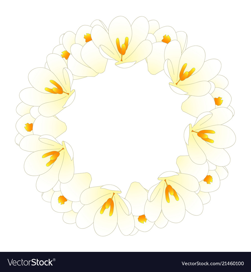White crocus flower wreath royalty free vector image white crocus flower wreath vector image mightylinksfo