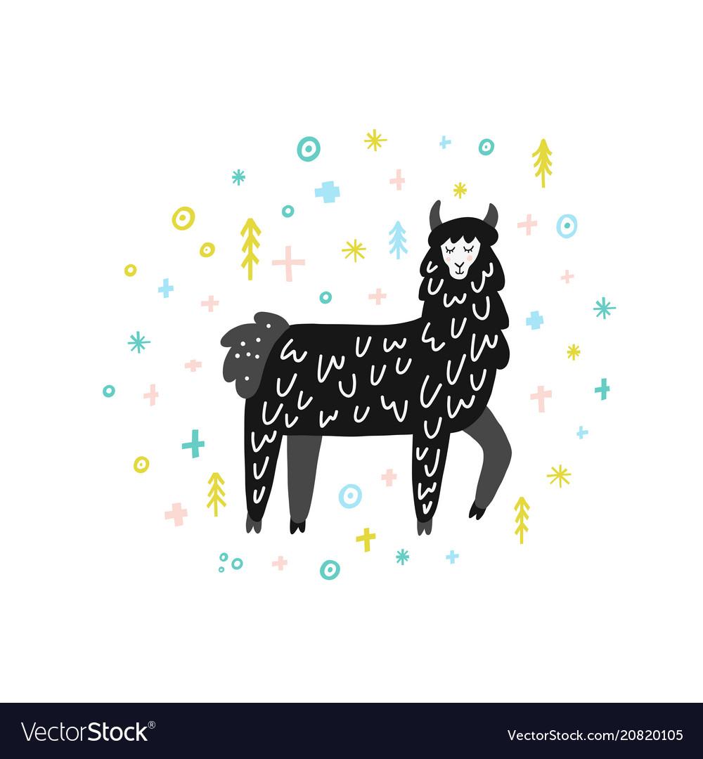 Winter lama
