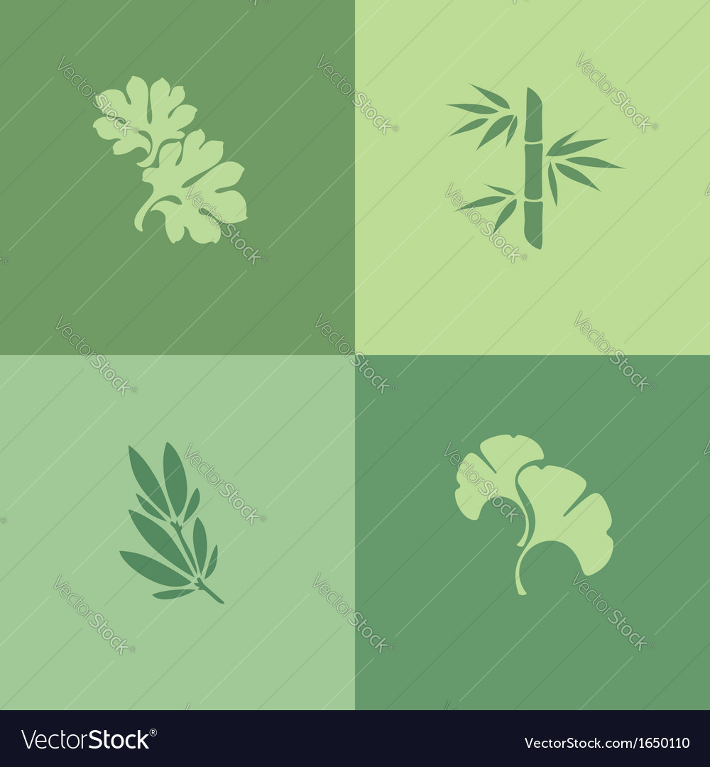 Leaf - Set of design elements vector image