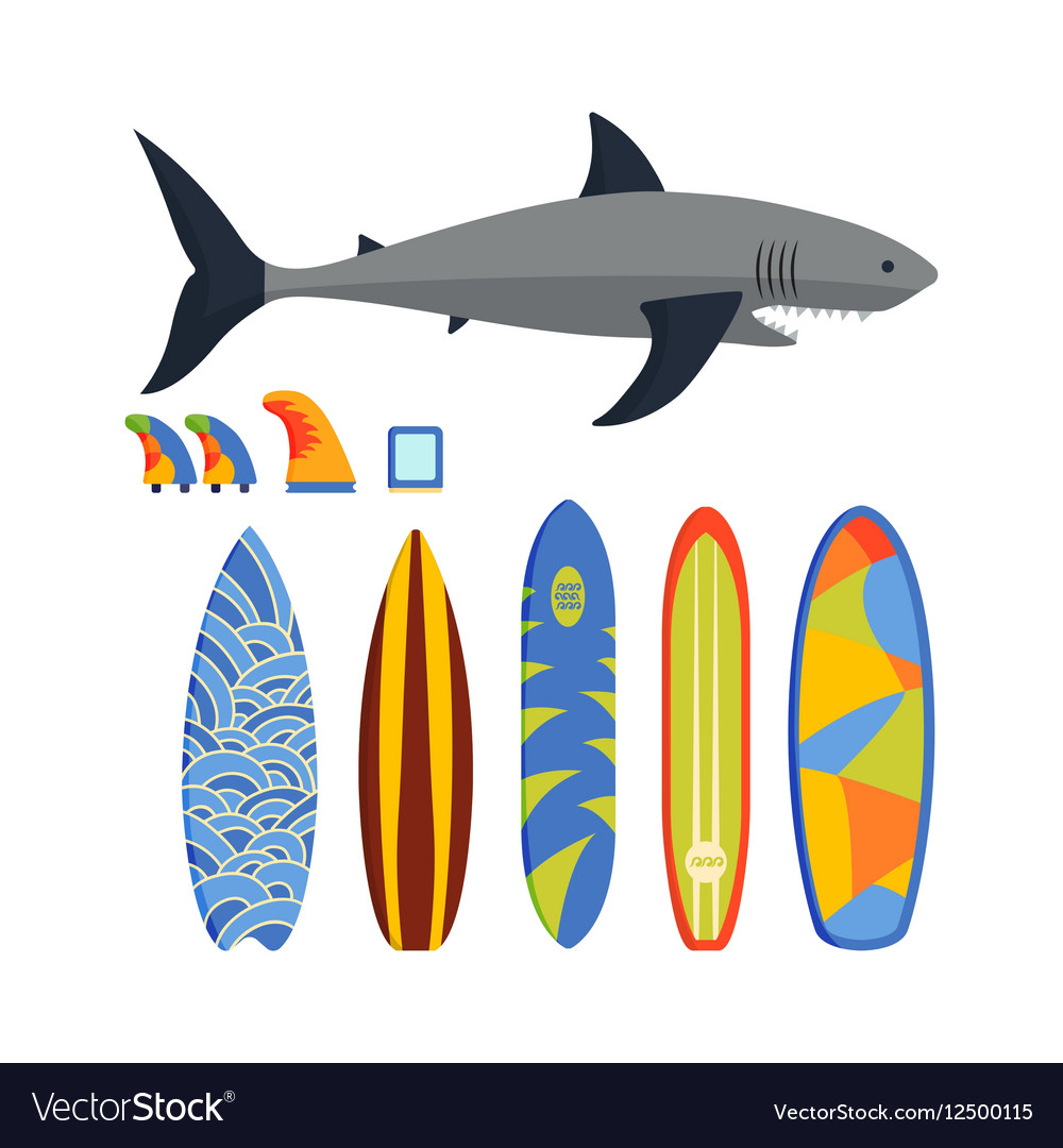 Surfing boards and shark