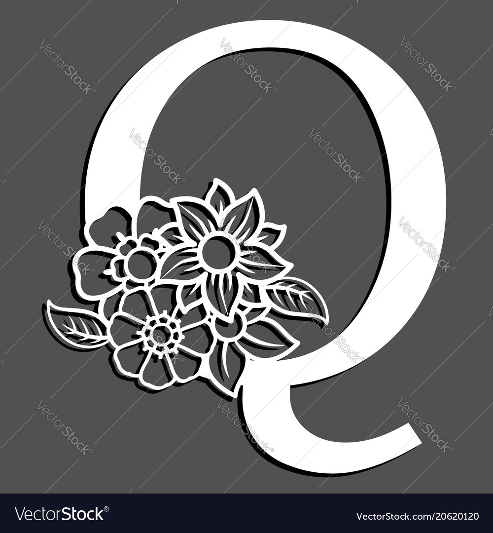Letter silhouette with flowers letter q vector image