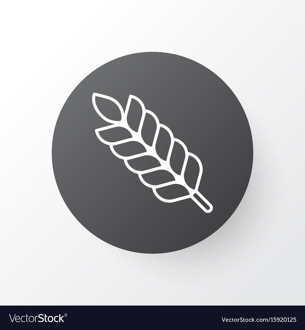 Plant icon symbol premium quality isolated wheat