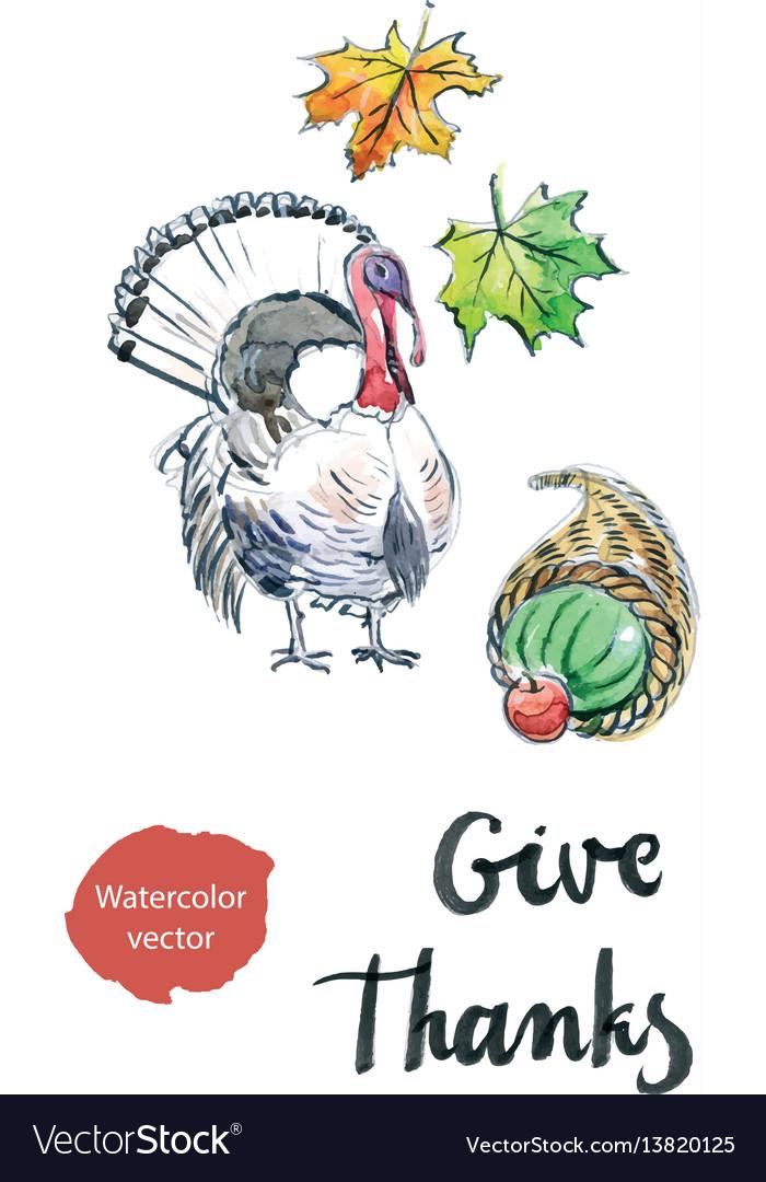 Watercolor turkey leaves