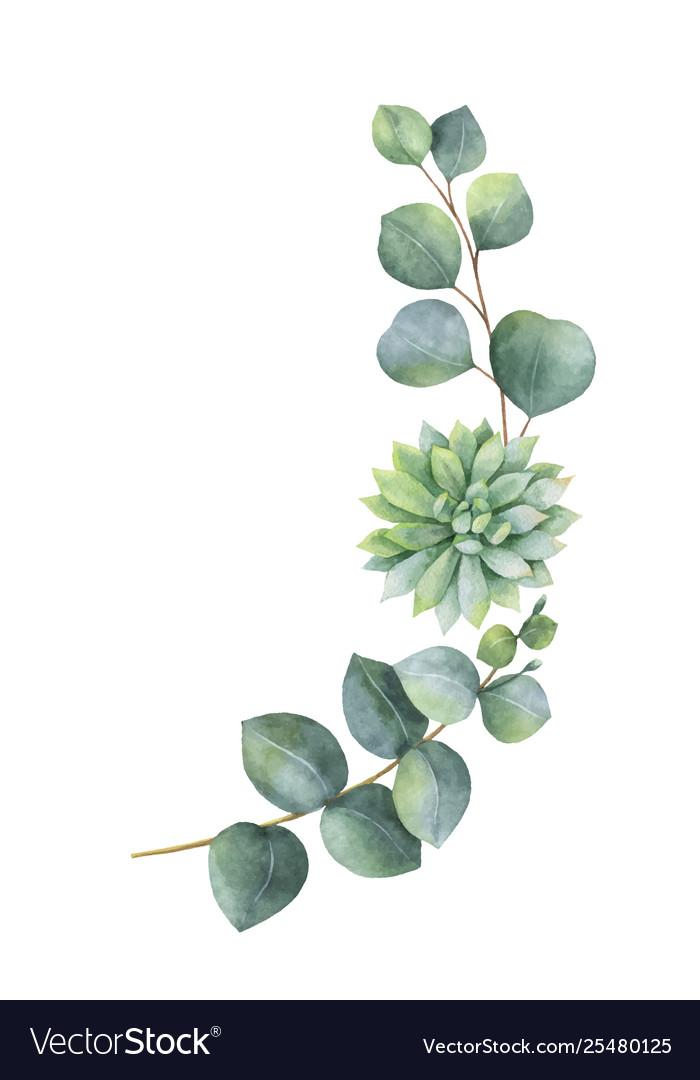 Eucalyptus Watercolor Wreath