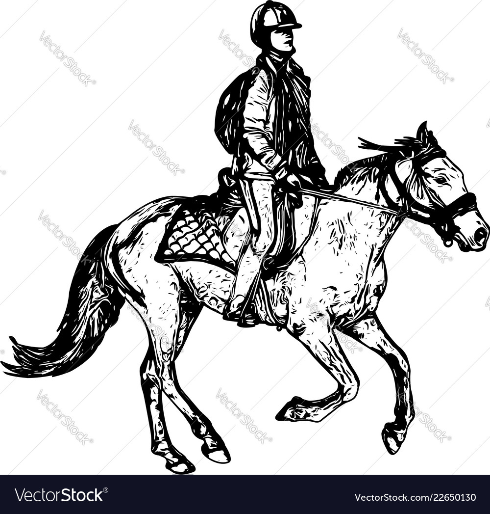Horse Riding Sketch Drawing Royalty Free Vector Image
