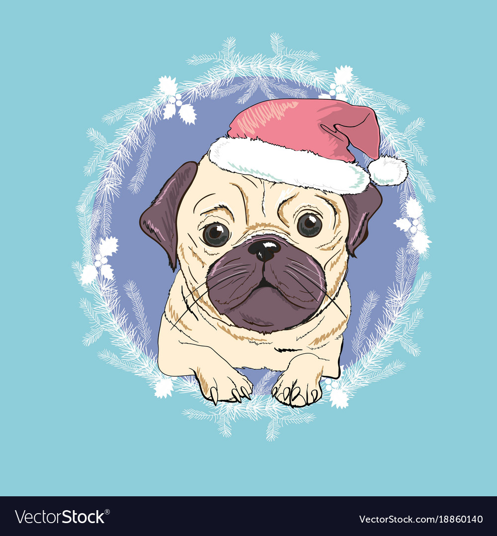 4061dfd7bc3 Christmas greeting card pug dog with red santa s Vector Image