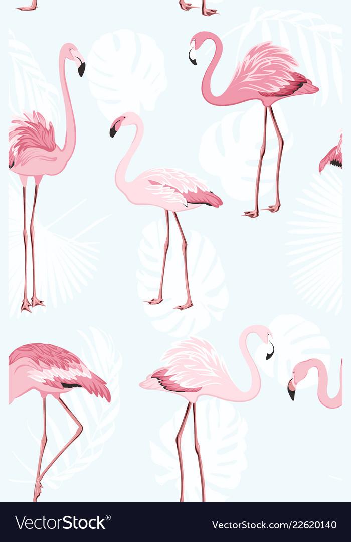 Pink flamingo beautiful exotic birds jungle palm