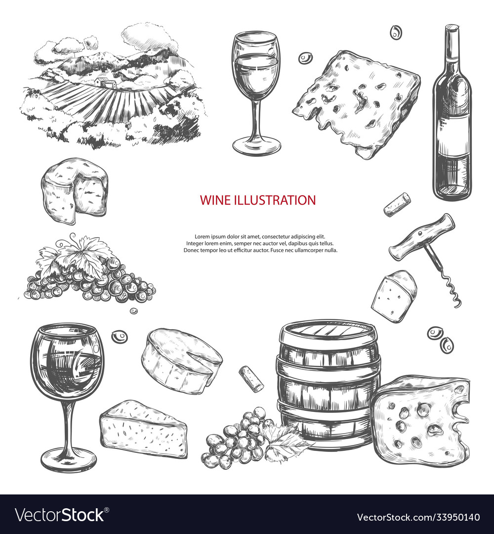 Wine set hand drawn elements including