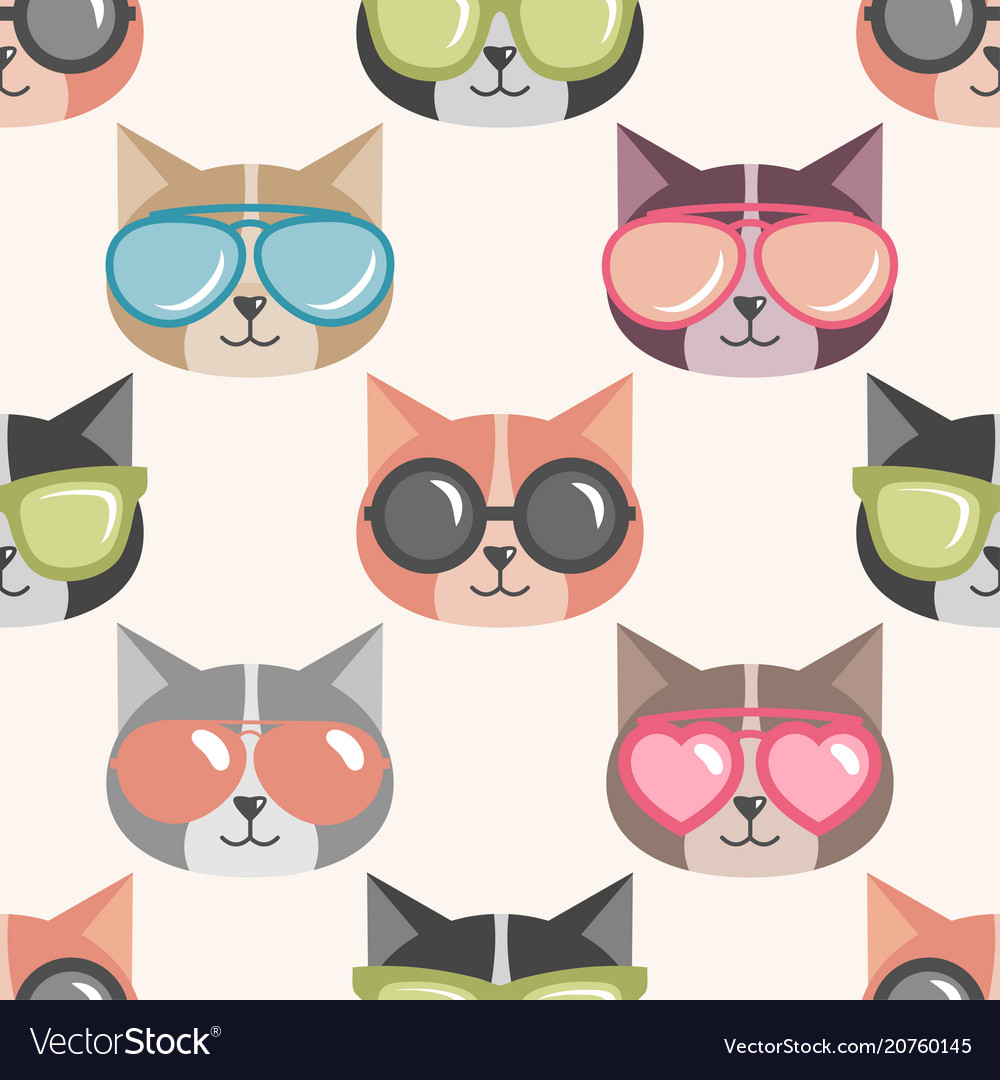 Background with funny cats with summer sunglasses
