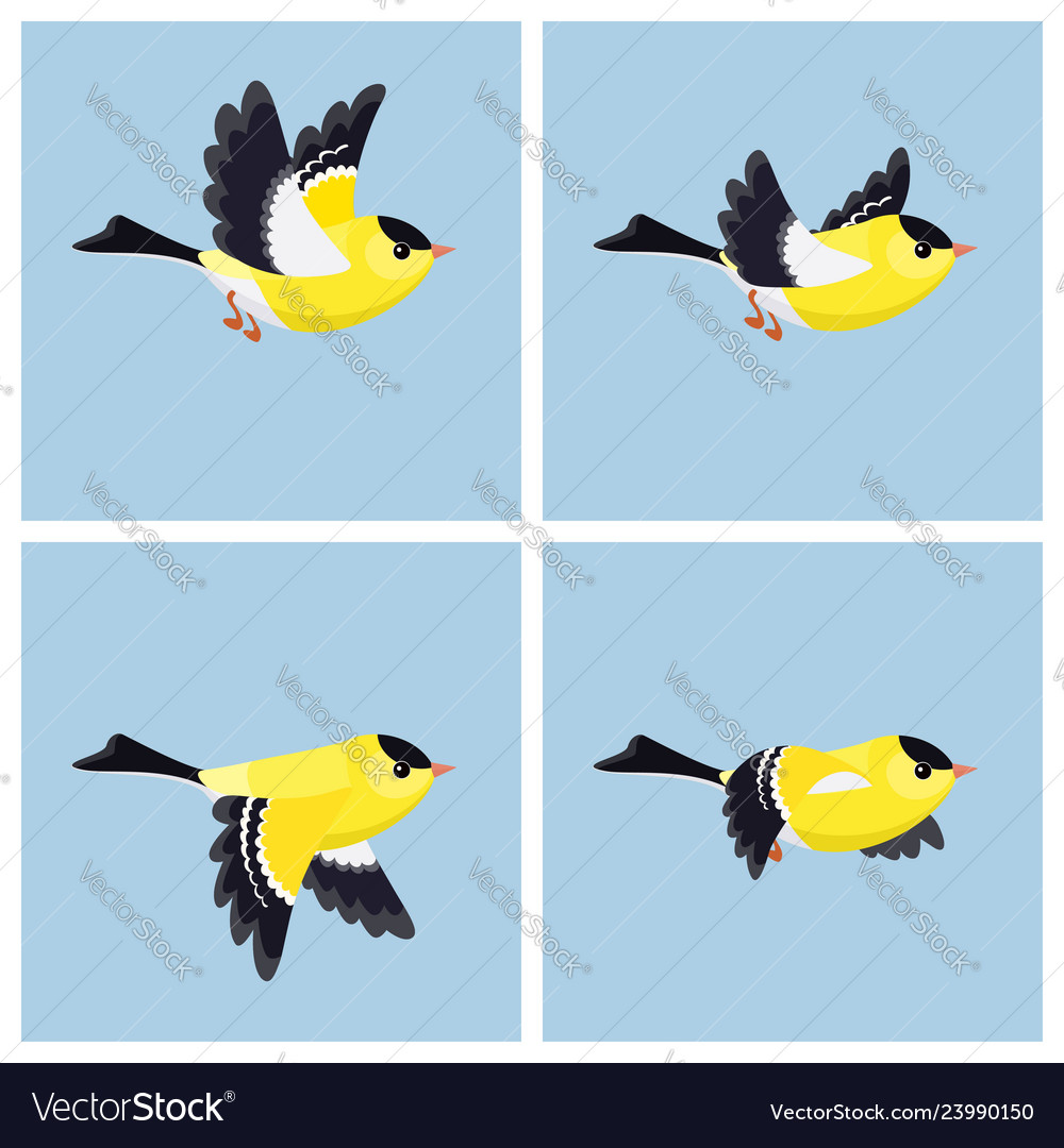 Flying american goldfinch male animation sprite