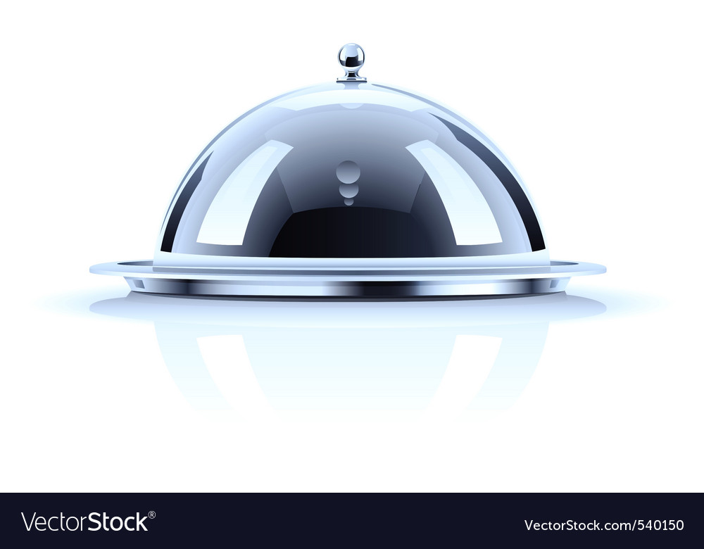 Tray and lid vector image