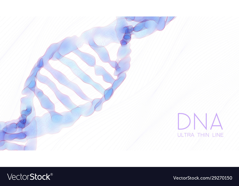 Ultra thin line shallow dna double helix colorful