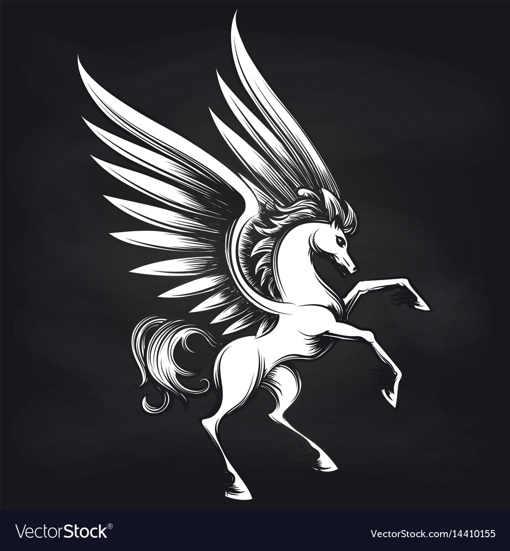 Pegasus on chalkboard design vector image