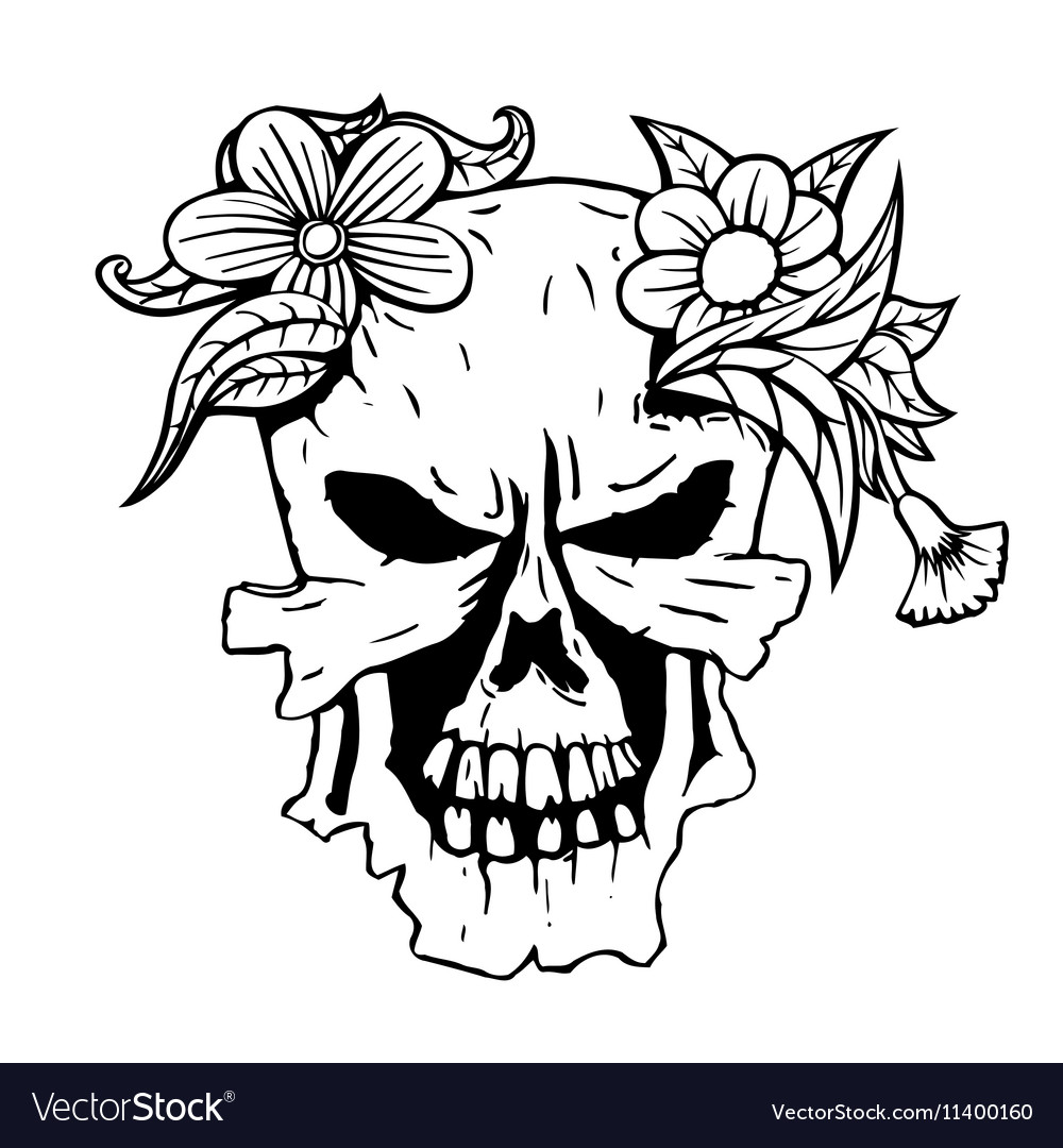 Skull With Succulent Plants Royalty Free Vector Image