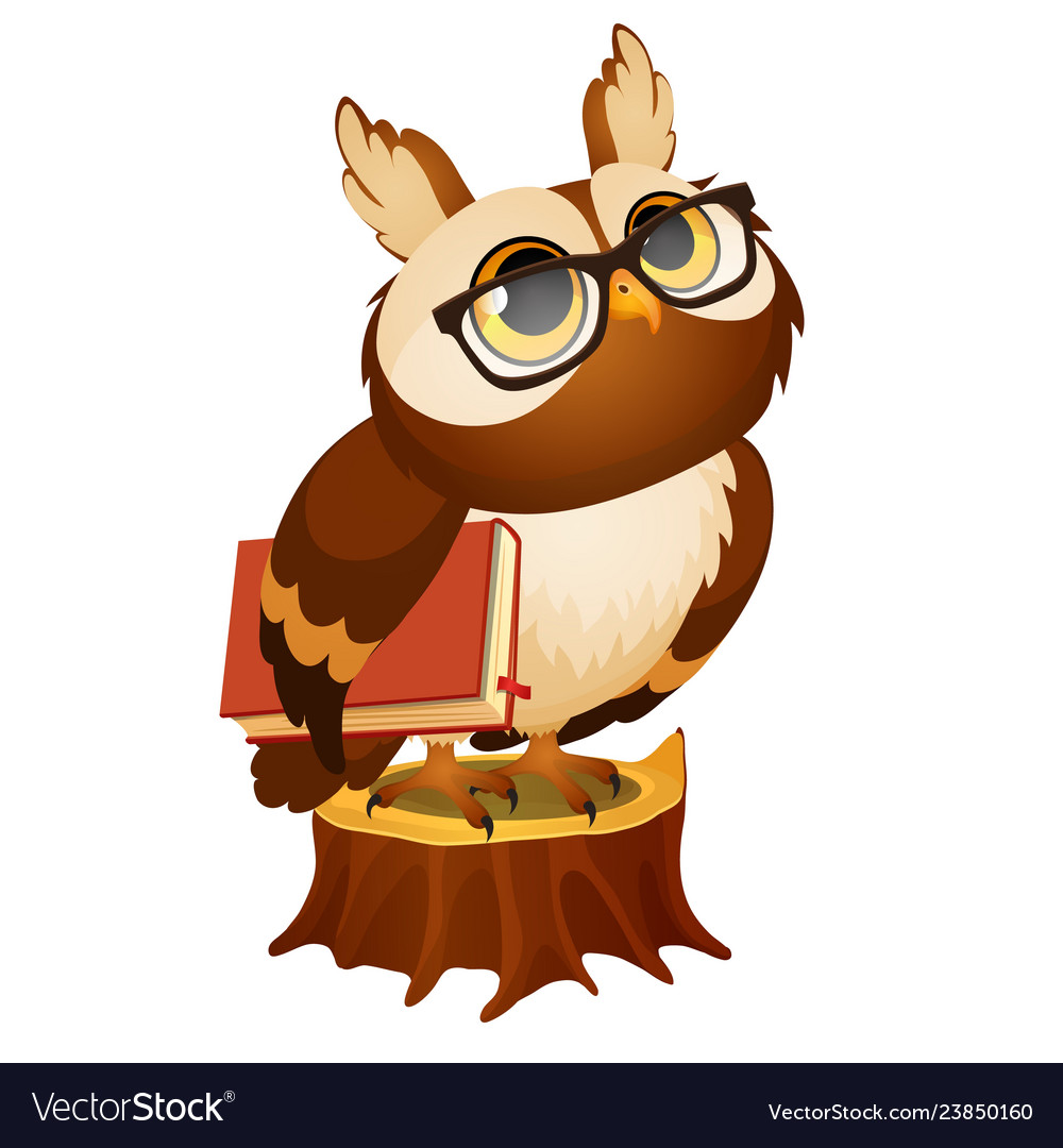Wise owl with a book stands on a stump isolated on