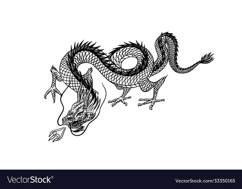 Chinese dragon mythological animal or asian