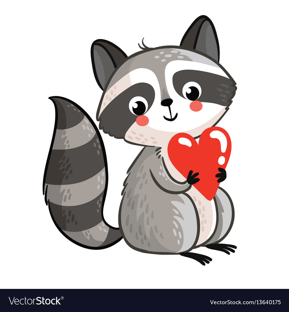 Isolated raccoon holding in the hands of the heart