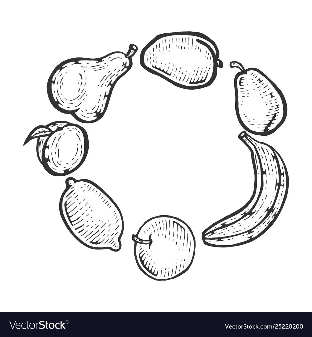 Fruits sketch engraving