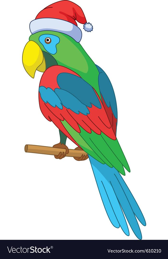 Parrot santa claus