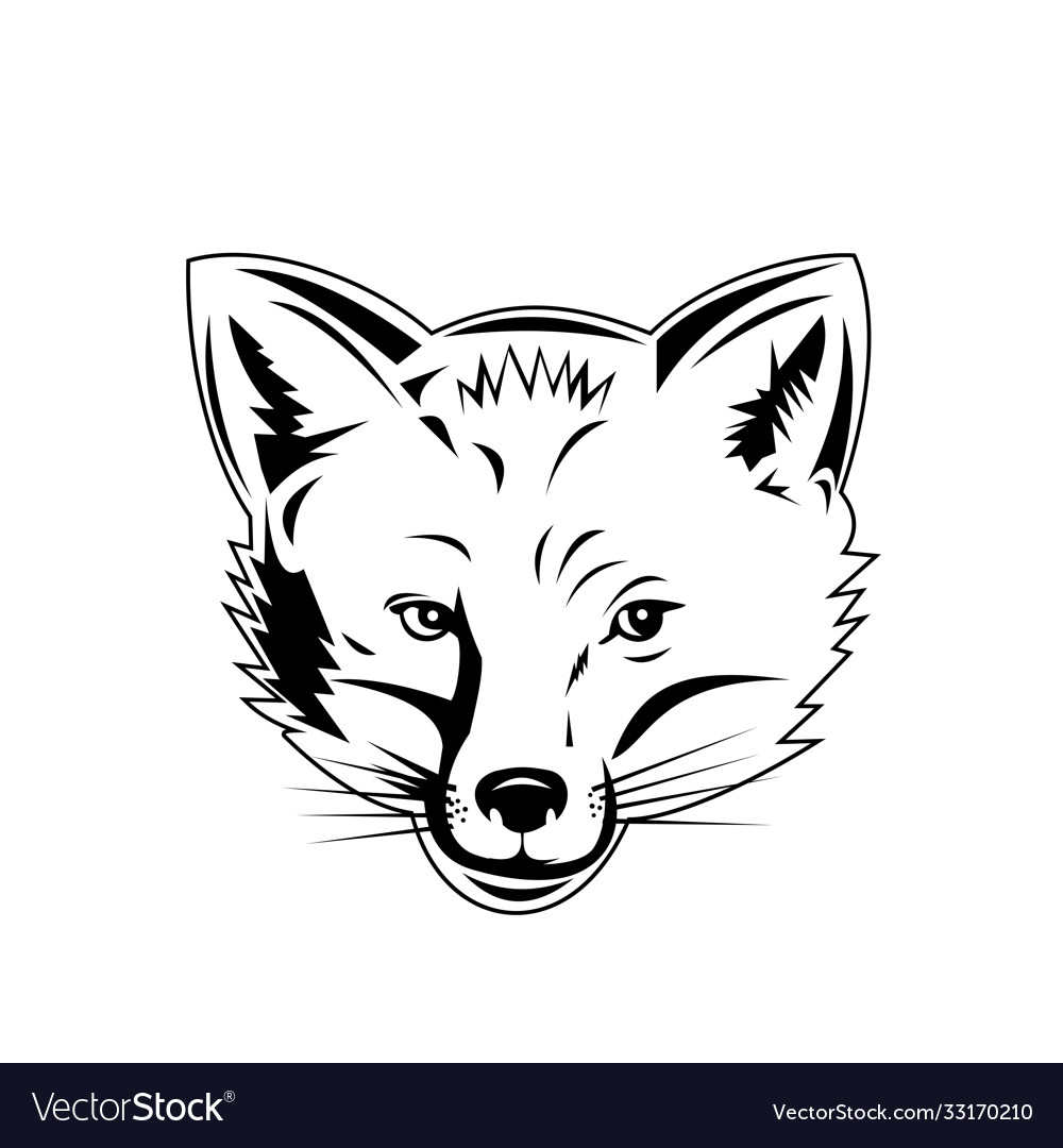 Red fox head viewed from front retro black