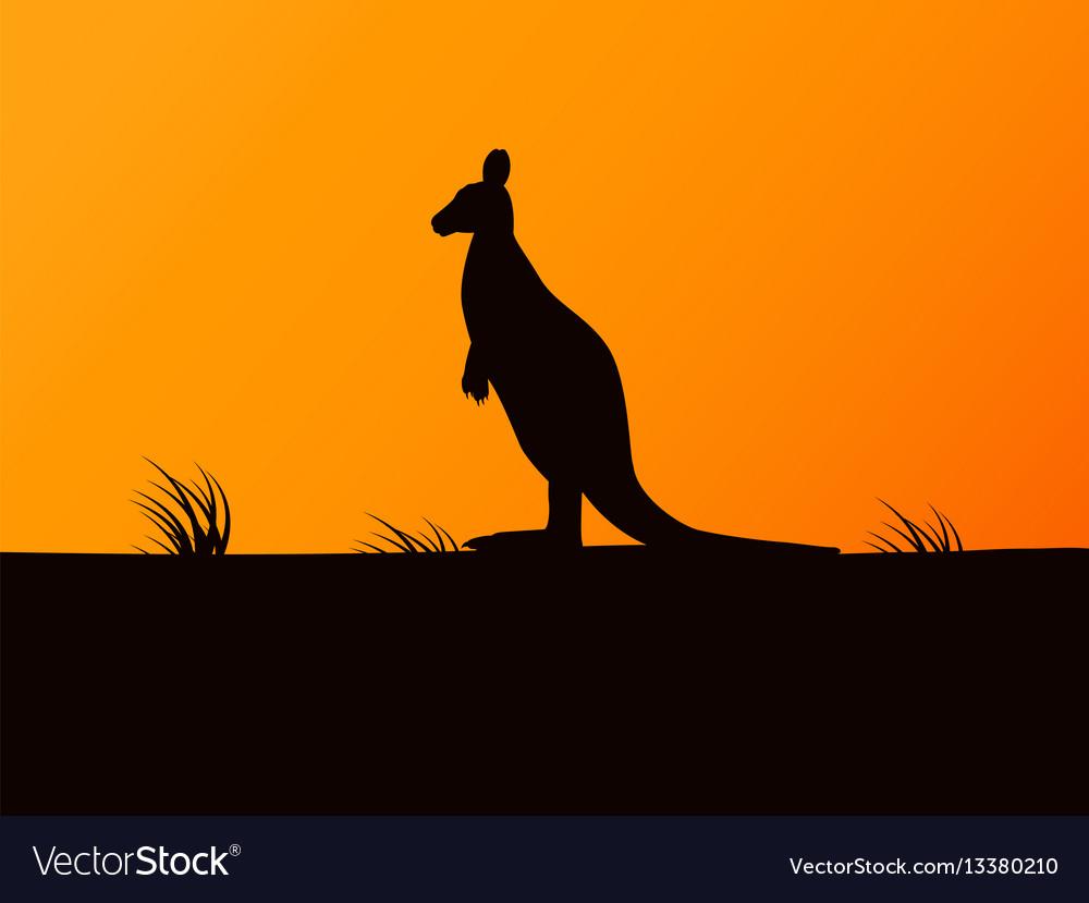 Silhouette kangaroo on background sunset