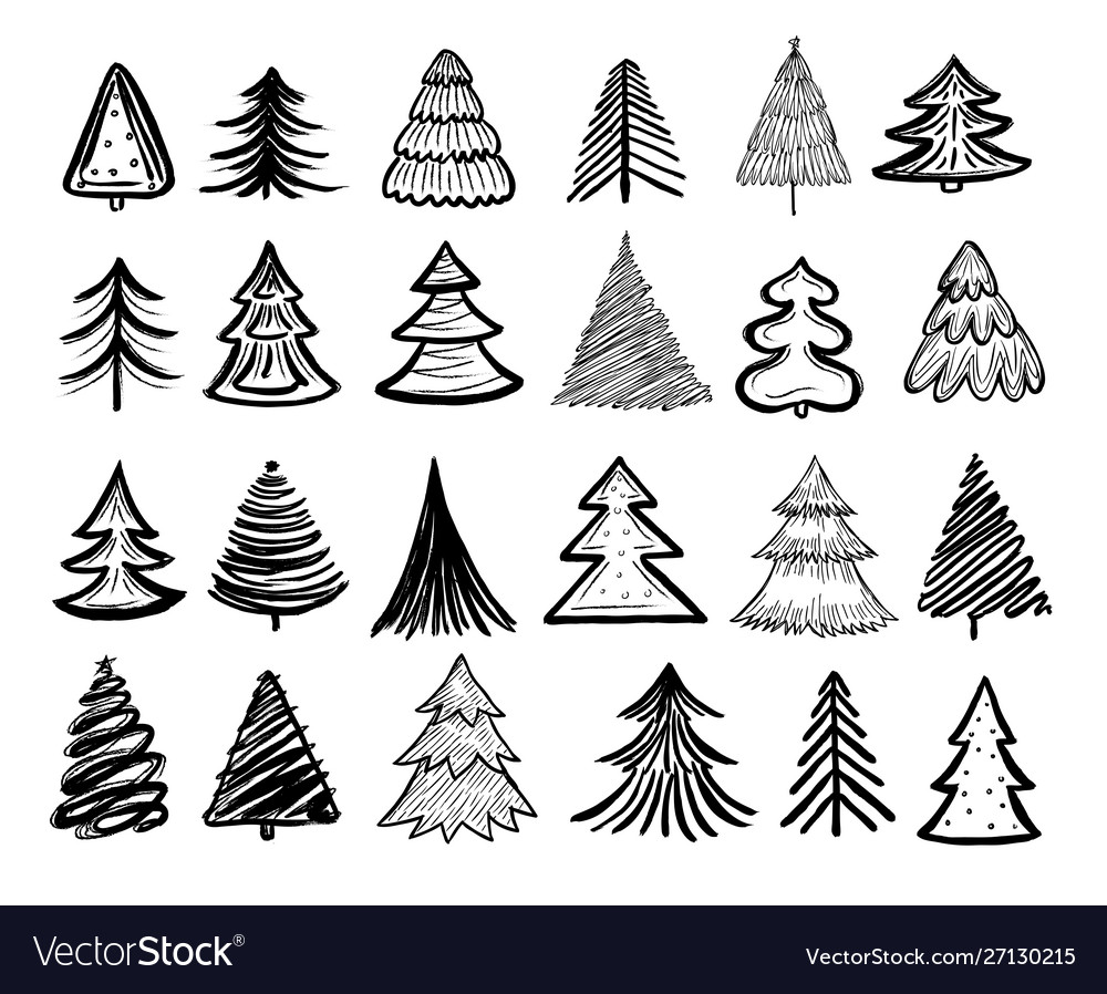 Sketch fir tree christmas trees scribble pen
