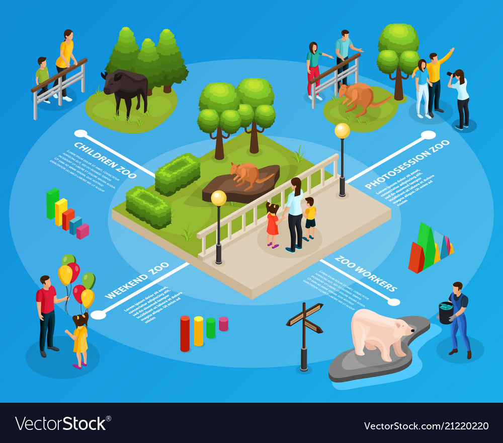 isometric zoo infographic template royalty free vector image