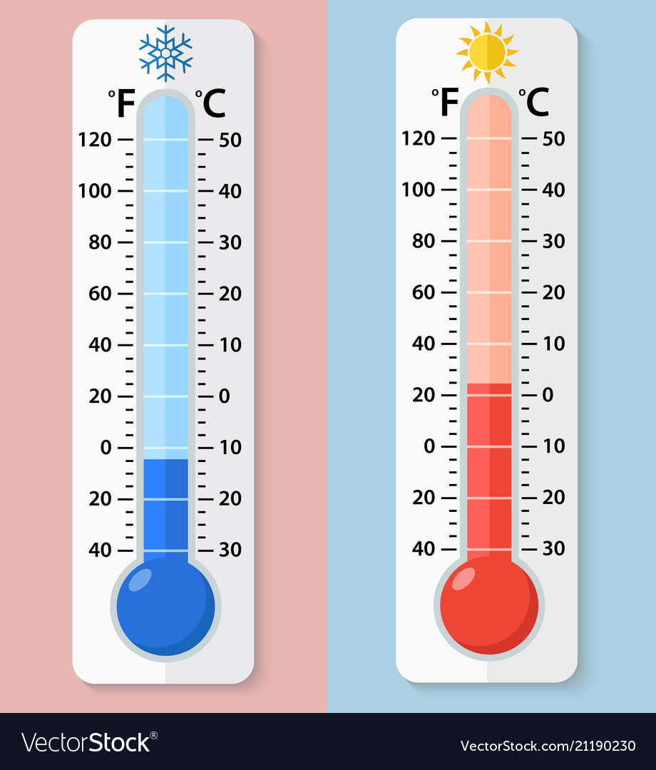Thermometer Fahrenheit And Celsius Vector Image