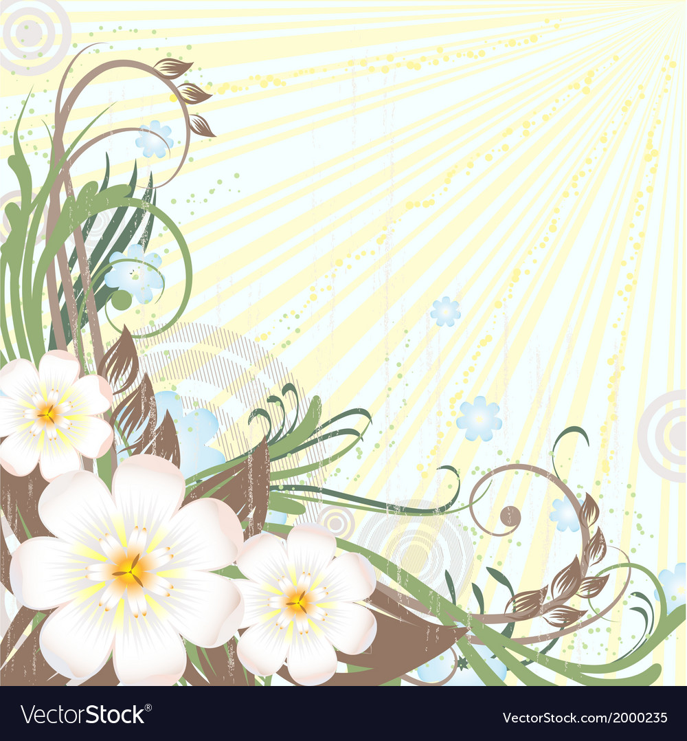 Background floral